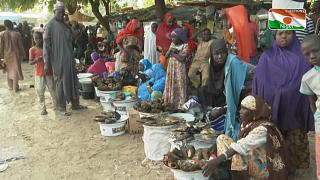 In Niger's Diffa, people are pressed by insecurity and climate change