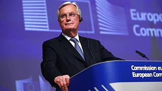 European Commission's Head of Task Force for Relations with the United Kingdom Michel Barnier