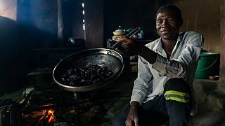 Crave for fried beetles grows in Zimbabwe's countryside