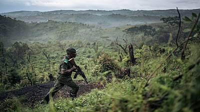 DRC: Access to Kahuzi-Biega Park blocked by rangers in a bid to claim their wages