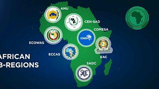 Afrikanische Freihandelszone: 54 Staaten tun sich zusammen