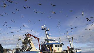 Un pesquero en el puerto de Dublín