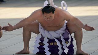 Ёкодзуна Хакухо