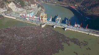 شاهد: جزر من أطنان النفايات العائمة تغطي نهر ديرنا  في البوسنة
