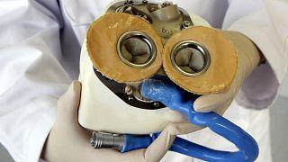 قلب اصطناعي قابل للزراعة في مقر شركة الطب الحيوي كرمات غرب باريس، فرنسا.
