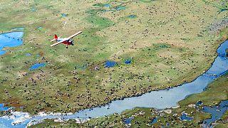 Az alaszkai nemzeti park egy része kőolajat rejt