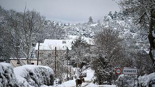 Un caballo camina a lo largo del camino mientras la nieve cubre el paisaje en el pequeño pueblo de Esnotz, en los Pirineos, al norte de España, el martes 5 de enero de 2021.