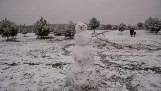 Снеговик в мадридском регионе
