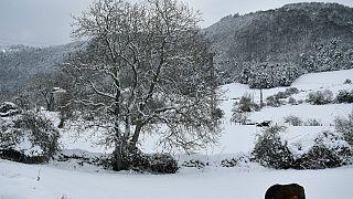 سرمای بیسابقه در شمال اسپانیا