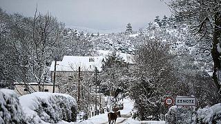 Ein Pferd trabt durch das verschneite baskische Dorf Esnotz, Navarra, in den Pyrenäen