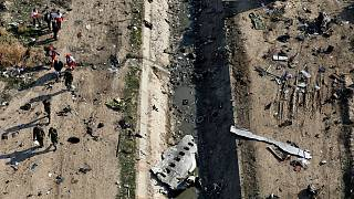 عناصر الإنقاذ خلال عملية بحث في موقع تحطم طائرة أوكرانية في إيران. 2020/01/08