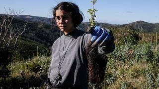 Elemento do Grupo de Estudos de Ordenamento do Território e Ambiente (GEOTA) durante os trabalhos de reflorestação do projeto Renature Monchique