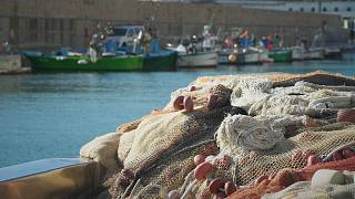 Um microchip para lutar contra as redes de pesca perdidas no mar