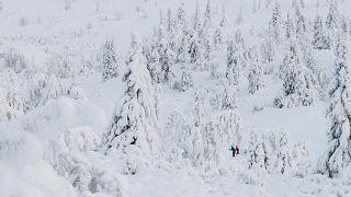 Mit Skiern unterwegs in Gausdal, 40 Kilometer nordwestlich von Lillehammer, Norwegen, 9.1.2016