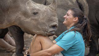 """Un orphelinat pour """"secourir, requinquer et relâcher"""" les bébés rhinos"""