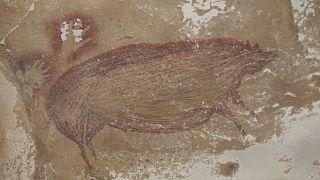 Βραχογραφία χοίρου