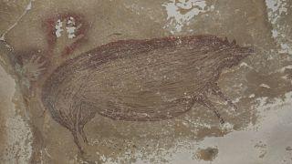 Древнейший наскальный рисунок обнаружен в пещере в Индонезии на юге острова Сулавеси
