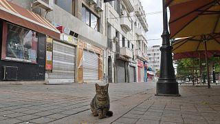 إغلاق في تونس