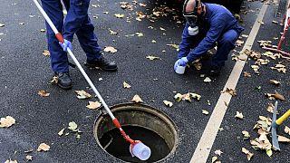 Prélèvements dans les égouts de la région de Marseille, 2020