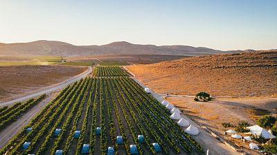The Negev desert, southern Israel