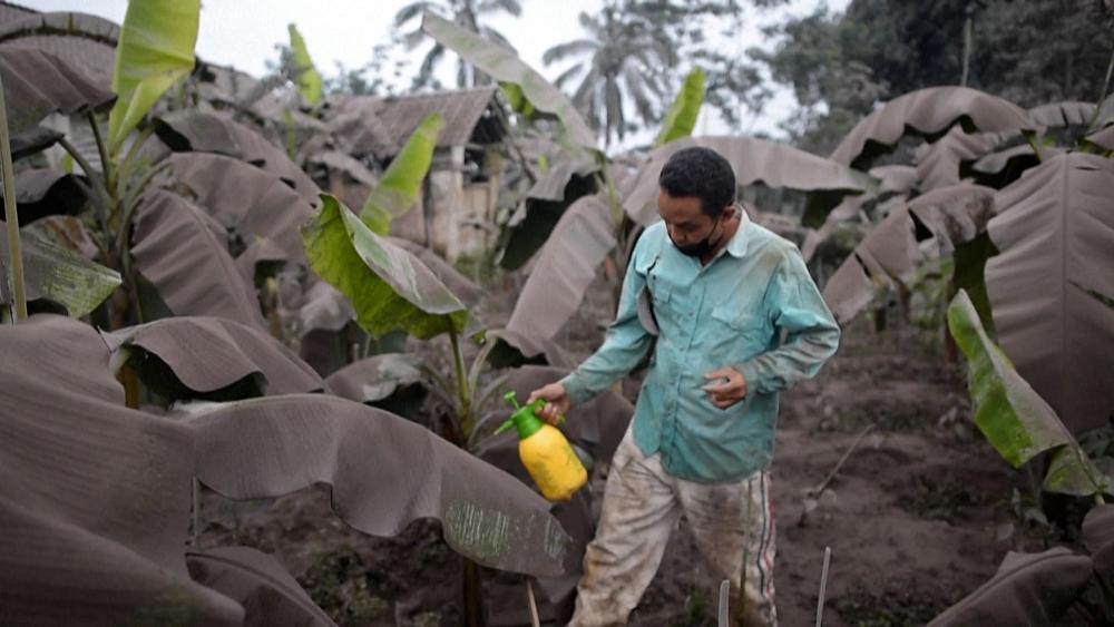 Residents on island of Java clear up ash from Mount Semeru volcano