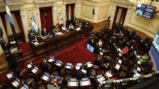 El Congreso debate la ley de IVE en diciembre de 2020, Buenos Aires, Argentina