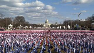 Thousands of US flags in the ground, US Capitol seen in the distance.