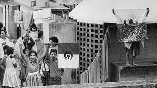 1  نوفمبر 1961، على سطح أحد المنازل في الجزائر العاصمة، شبان يلوحون بأعلام الجزائر احتفالاً بعيد الاستقلال الجزائري.