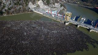Мусор на плотине на реке Дрина в Боснии и Герцеговине