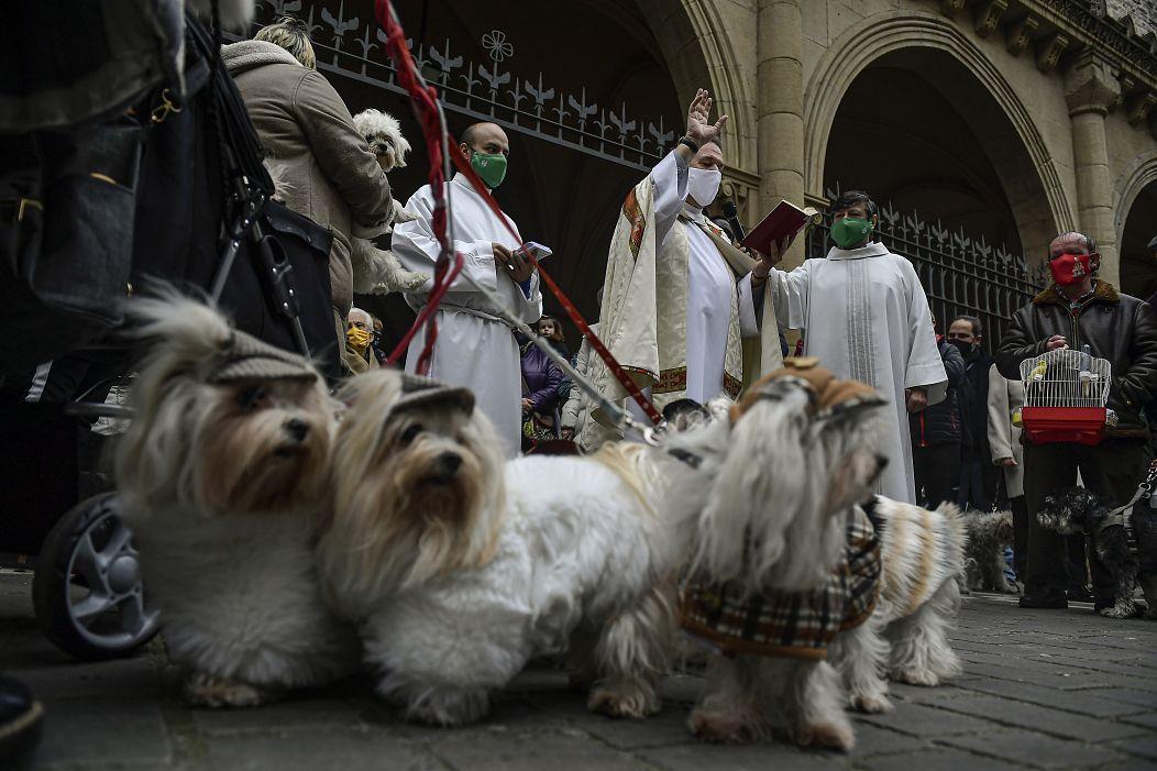 Alvaro Barrientos/AP Photo