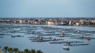 مزرعة أسماك عائمة في دلتا النيل في محافظة البحيرة الشمالية في مصر. 2019/10/24