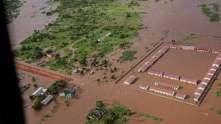 Mozambique: Cyclone Eloise leaves massive flooding in its wake