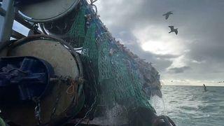"""""""Брексит"""" обманул ожидания рыбаков - цены на рыбу упали вдвое"""