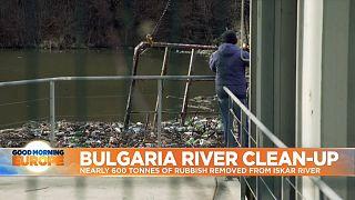 Man cleaning Iskar River