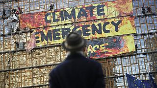 BM'nin 1.2 milyon kişilik anketi: Dünyanın üçte ikisi 'iklim acil durumu var' diyor