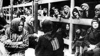 عکس در سالهای جنگ جهانی دوم و از زمان رسیدن زنان و کودکان به اردوگاه آشویتس گرفته شده است.