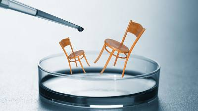 Wooden furniture could theoretically be grown fully formed without the need for screws or glue.