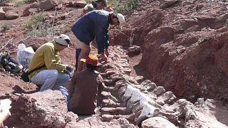 Excavação na Argentina
