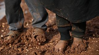 BM'den Suriye'deki yabancı çocukların ülkelerine götürülmesi çağrısı