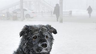 Αυτό είναι το πιο παγωμένο χωριό στον κόσμο