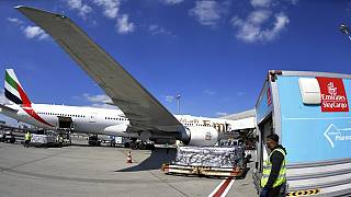 Emirates to make daily Covid vaccine deliveries to developing countries