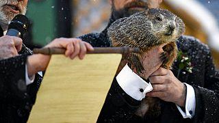 Un momento de la lectura del veredicto de Phil la marmota