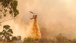 Avustralya'da orman yangını: Binlerce kişiden evlerini terk etmesi istendi