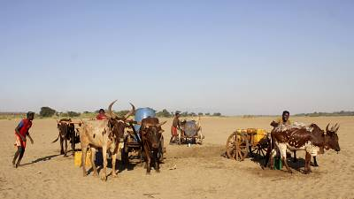 Madagascar: Thousands Migrate North to Escape Hunger and Drought