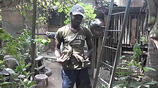 Ghana : un zoo familial avec 25 espèces d'animaux