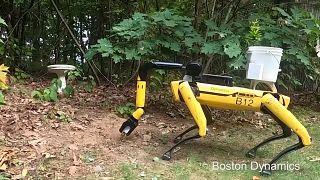 روبوت كلب للمهام الصعبة