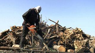 ارتفاع الطلب على استيراد الفحم في قطاع غزة يؤذي الانتاج المحلي لهذه المادة