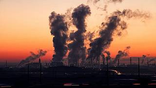 Dünya Sağlık Örgütü verilerine göre dünyada hava kirliliği sebebiyle her sene 7 milyon bebek hayatını kaybediyor.