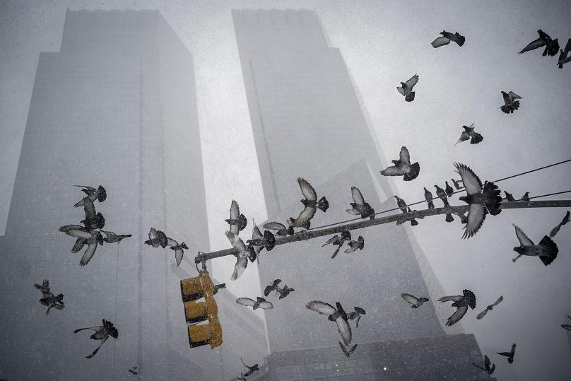 Wong Maye-E/AP Photo