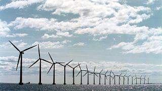 Windkraftanlagen vor der dänischen Küste